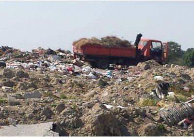 """""""Mali i plehrave"""", qytetarët e Fierit kërkojnë zgjidhje urgjente!"""